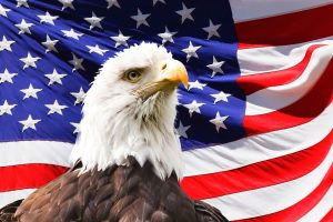 Eagle with flag in background