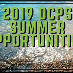 2019 Summer Opportunities