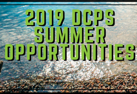 2019 Summer Opportunities